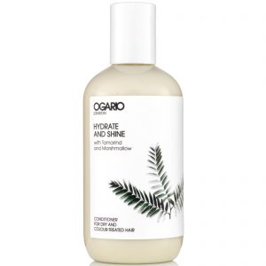 Hydrate and Shine Conditioner; Best for adding moisture to Dry, Damaged or Colour-Treated Hair